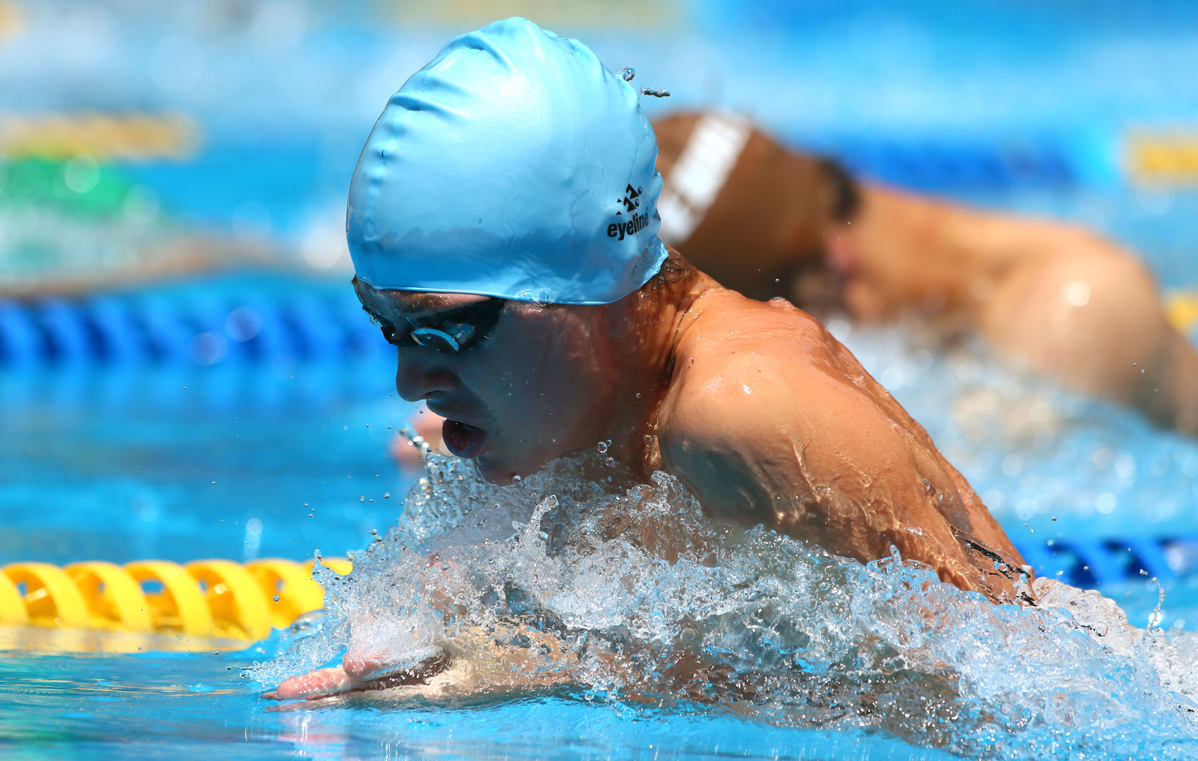 Swimming sports 2015 king 39 s college - University of auckland swimming pool ...